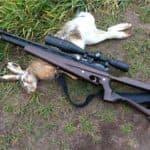 Пневматические винтовки для охоты без лицензии: краткое описание самых лучших