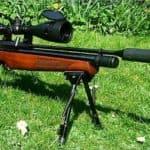 Взрослые игрушки: выбор пневматической винтовки