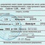 Разрешение на пневматику в России: нужно ли?